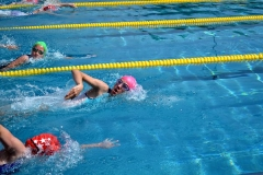 k-2014_06_04-JTFO-Triathlon-in-Darmstadt-1